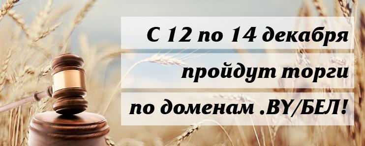 С 12 по 14 декабря пройдут торги на аукционе по доменам BY/БЕЛ!