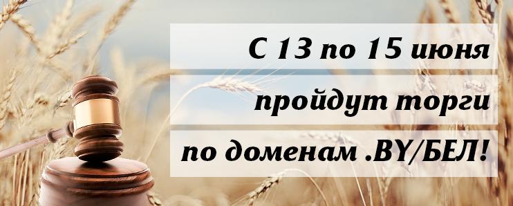 С 13 по 15 июня пройдут торги на аукционе по доменам .BY/БЕЛ!