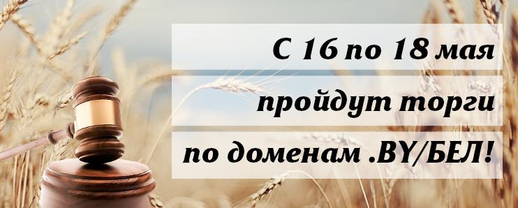 С 16 по 18 мая пройдут торги на аукционе по доменам .BY/БЕЛ!