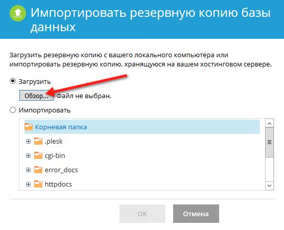 Кнопка выбора файла для импорта