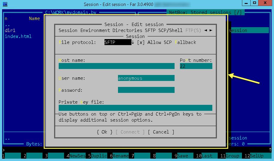 Окно параметров FTP-сервера