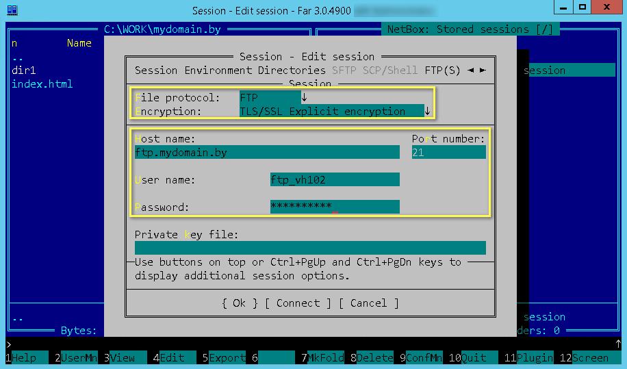 Поля для настройки подключения к FTP-серверу