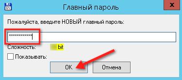 Окно ввода главного пароля